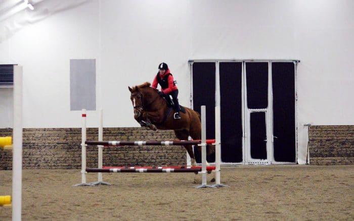 Häst som hoppar över hinder i en ridhall
